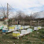 Κέντρο Μελισσοκομίας Δυτικής Μακεδονίας : Δήλωση Κυψελών έτους 2019 – Αίτηση Διαχείμασης