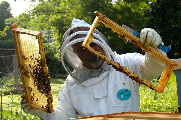 Το νέο Διοικητικό Συμβούλιο του Μελισσοκομικού Συλλόγου Κοζάνης- Πρόεδρος ο Μεντεσίδης Αιμίλιος