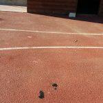 Eπιστολή διαμαρτυρίας αναγνώστη στο kozan.gr: Απαράδεκτη η κατάσταση στο χώρο του κουλμβητηρίου – γυμναστηρίου του δήμου Εορδαίας, μετά την απόφαση για τη μεταφορά των εορταστικών εκδηλώσεων (Φωτογραφίες)