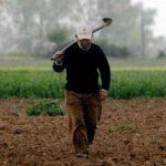 Κοινοβουλευτική παρέμβαση του ΚΚΕ για τις ζημιές από τις βροχοπτώσεις σε σιτηρά και κεράσια των χωριών της Π.Ε. Γρεβενών