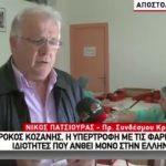 To χθεσινό (26/12) ρεπορτάζ της τηλεόρασης του FLASH για τον Κρόκο Κοζάνης (Βίντεο)
