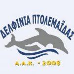 Από την Α.Κ.Α. Δελφίνια Πτολεμαΐδας ζητείται γυμναστής – γυμνάστρια κολύμβησης με ειδικότητα προσαρμοσμένης φυσικής αγωγής