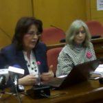 kozan.gr: Γ. Ζεμπιλιάδου: «Το ταμείο επιχειρηματικότητας έχει βασικά προβλήματα όπως η διαφάνεια στη διαχείρισή του»