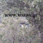 kozan.gr: Βίντεο με κομμάτι από τα συντρίμμια του στρατιωτικού ελικοπτέρου, που έπεσε στο Σαραντάπορο