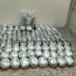 Γρεβενά: Συνελήφθησαν δυο άτομα για διακίνηση 106 κιλών και 270 γραμμαρίων ακατέργαστης κάνναβης (Φωτογραφίες)