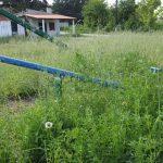 Επιστολή αναγνώστριας στο kozan.gr: «Ζούγκλα» η παιδική χαρά Πρωτοχωρίου (Φωτογραφίες)