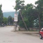 Σχόλιο αναγνώστη στο kozan.gr: Αφίσα που μας καλεί να πάμε στην περσινή Γενική Εμπορική Έκθεση (Φωτογραφίες)