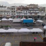 kozan.gr: Πτολεμαίδα: Στήθηκαν τα «περίπτερα» για την 19η Ανθοκομική Έκθεση, που εγκαινιάζεται αύριο Πέμπτη 25 Μαΐου  (Φωτογραφίες)
