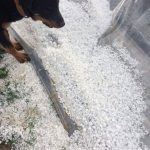 kozan.gr: Ισχυρή χαλαζόπτωση στον Άργιλο Κοζάνης και τα πέριξ χωριά (Βίντεο & Φωτογραφίες)