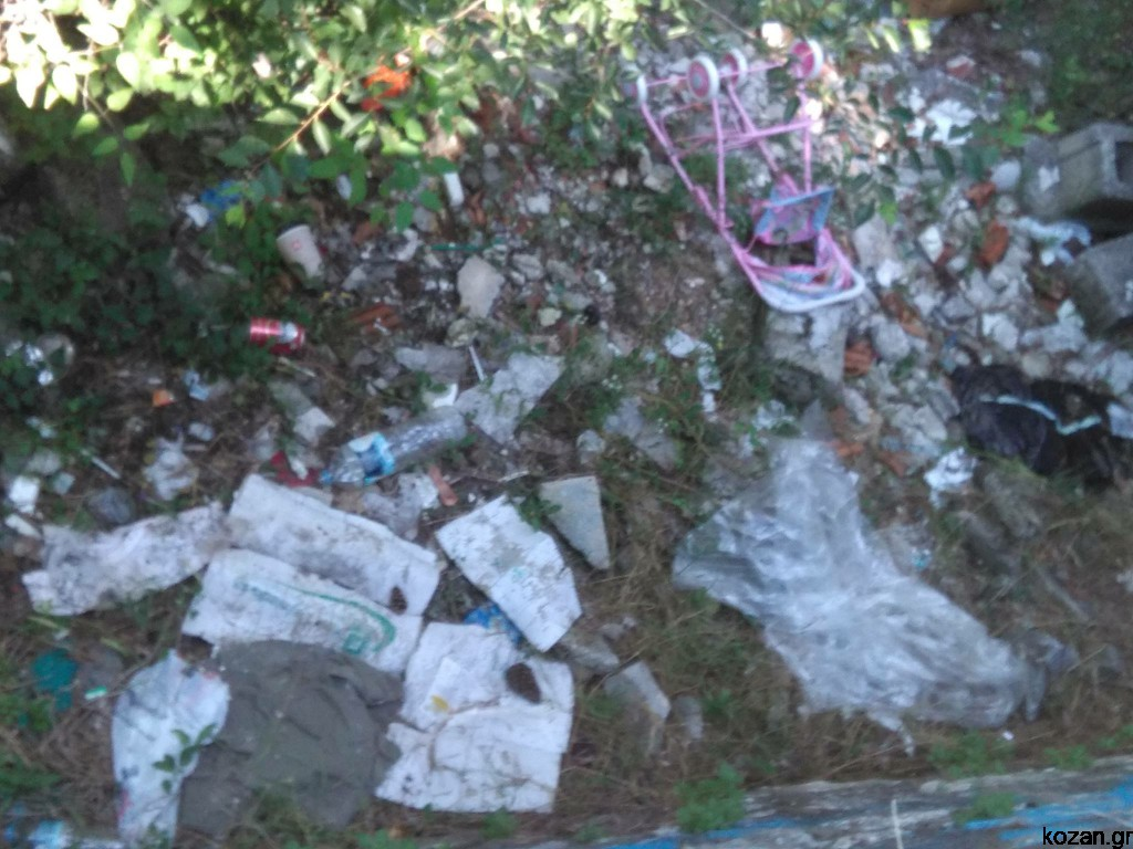 kozan.gr: Xόρτα και απορρίμματα στην ευρύτερη περιοχή του Ο.Σ.Ε. Κοζάνης (Φωτογραφίες)