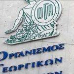 Ερώτηση του Βουλευτή Ν. Σερρών κ. Μιχάλη Τζελέπη για την κατάσταση στο Περιφερειακό τμήμα πρώην ΟΓΑ Δυτικής Μακεδονίας