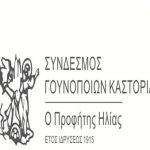 Καστοριά: Eορτασμός του προστάτη των Γουνοποιών, Προφήτη Ηλία, 19 και 20 Ιουλίου