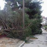kozan.gr: Πτολεμαίδα: Όσα άφησε πίσω της η χθεσινή έντονη βροχόπτωση (Φωτογραφίες)