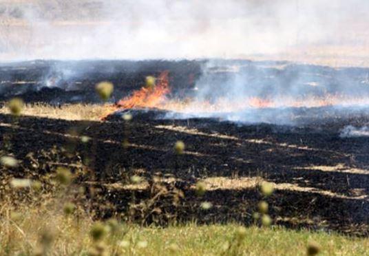 kozan.gr: Κάηκαν – περίπου – 100 στρέμματα σιτοκαλαμιές στα όρια των οικισμών Τρανοβάλτου – Μικροβάλτου στο δήμο Σερβίων – Βελβεντού