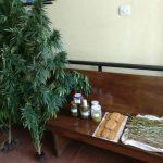 Kατείχε μπισκότα κάνναβης και βούτυρο κάνναβης – Συνελήφθη, 52χρονος, από αστυνομικούς του Τμήματος Ασφάλειας Κοζάνης, σε περιοχή των Ιωαννίνων(Φωτογραφίες)