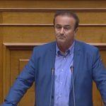 Ερώτηση του βουλευτή Φλώρινας κ. Γ. Αντωνιάδη για την έγκαιρη εκταμίευση του κονδυλίου για τα ξύλα