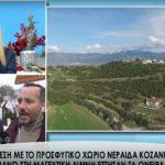 kozan.gr: Η σημερινή, ζωντανή, τηλεοπτική, σύνδεση του Star Channel με την Τ.Κ. Νεράιδας του δήμου Σερβίων – Βελβεντού (Βίντεο)