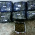 Σύλληψη 37χρονου σε δασική περιοχή της Φλώρινας για εισαγωγή κάνναβης με σκοπό τη διακίνηση  βάρους 8 κιλών και 343 γραμμαρίων (Φωτογραφία)