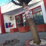 Eπιστολή αναγνώστη στο kozan.gr: Πτολεμαίδα: «Πολιτισμός στα λιγοστά δέντρα» (Φωτογραφίες)
