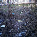 Παράπονα αναγνωστών στο kozan.gr: Εστία μόλυνσης το οικόπεδο στη διασταύρωση των οδών Ολυμπίου Γεωργάκη & Επισκόπου Βενιαμίν στην Κοζάνη (Φωτογραφίες)