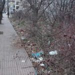 Σχόλιο – απορία αναγνώστη στο kozan.gr: «Θα γίνει καθαρισμός της εισόδου της πόλης (οδός Λαρίσης ) ή καλά είμαστε κι έτσι;»