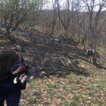 Δασική πυρκαγιά στο χωριό Σκλήθρο – Άμεση επέμβαση από την Πυροσβεστική Υπηρεσία Πτολεμαΐδας (Φωτογραφίες)