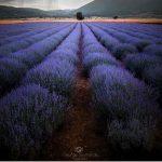 Ο έλληνας φωτογράφος, Γιώργος Σουμελίδης, που κάνει τη χώρα να φαίνεται σαν σκηνικό από ταινία φαντασίας – Oι φωτογραφίες του από τη Δ. Μακεδονία