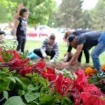 Η υπέροχη εθελοντική εκδήλωση στο πάρκο της Αγίας Παρασκευής στον Κρόκο (Γράφει η Ιωάννα Κύρου)