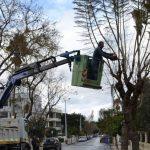 Δήμος Γρεβενών: Έκκληση για αποφυγή στάθμευσης οχημάτων σε σημείο της Οδού 13ης Οκτωβρίου τη Δευτέρα 8 Μαρτίου λόγω εργασιών κλαδέματος