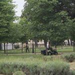 Ολοκληρώνονται σήμερα οι εργασίες συντήρησης πρασίνου στο Δημοτικό Κήπο Κοζάνης (Φωτογραφίες & Βίντεο)
