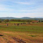11η Πανελλήνια Συγκέντρωση Φίλων Ελεύθερης Ιππασίας, στις 19-20 Μαΐου, στη Σιάτιστα