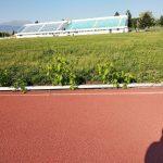 kozan.gr: Εικόνα εγκατάλειψης στο γήπεδο ΔΑΚ Πτολεμαΐδας – Σημερινές (13/5/2018) φωτογραφίες αναγνώστη