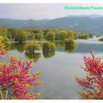 Καλωσορίζοντας το Μάη – Ανοιξιάτικες «ζωγραφιές» (20), από τα Καμβούνια, τα Αναβρυκά, τη λίμνη Πολυφύτου (γέφυρα Ρυμνίου)