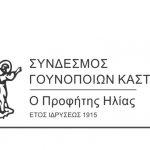 2ο Επιδοτούμενο σεμινάριο από τον Σύνδεσμο Γουνοποιών Καστοριάς
