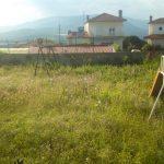 Πλήρης εγκατάλειψη στην κεντρική παιδική χαρά της Ελάτης του δήμου Σερβίων – Βελβεντού
