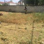 Δήμος Σερβίων-Βελβεντού: Καθαρισμός παιδικών χαρών και πρόταση στο πρόγραμμα ΦΙΛΟΔΗΜΟΣ