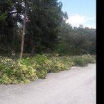 kozan.gr: Ξεκίνησε η ανάπλαση του Κουρί Κοζάνης – Σε εξέλιξη οι εργασίες πρασίνου (Βίντεο & Φωτογραφίες)