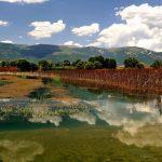 Ενημέρωση της Αποκεντρωμένης Διοίκησης Ηπείρου-Δυτικής Μακεδονίας για το φαινόμενο του δυσχρωματισμού στη Λίμνη Βεγορίτιδα