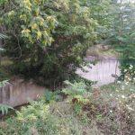 Eπιστολή αναγνώστη: Kαθαρισμός στην αντιπλημμυρική τάφρο των Σερβίων (Φωτογραφίες)