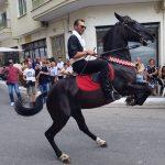 kozan.gr: Αναβίωσε και φέτος στην Σιάτιστα, του Δήμου Βοΐου, το έθιμο των καβαλάρηδων προσκυνητών του δεκαπενταύγουστου  (Φωτογραφίες & Βίντεο)