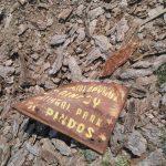Διασταύρωση για τον Εθνικό Δρυμό (Βάλια Κάλντα): Τι κάνει Δήμος, Περιφέρεια, Δασαρχείο & Φορέας διαχείρισης του Δρυμού; (Φωτογραφία – Της Μαρίας Σουπιάδου)