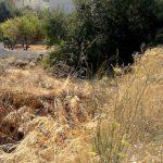 Δήμος Βοΐου: Καθαρισμός ιδιωτικών οικοπέδων και ακάλυπτων χώρων εντός οικισμών