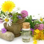 Koζάνη: Ανακοίνωση της 1ης Πανελλήνιας Κλαδικής Έκθεσης + Συνεδρίου Αρωματικών & Φαρμακευτικών Φυτών, από 19 έως 21 Οκτωβρίου