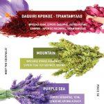 Bartending show και εντυπωσιακά κοκτέιλ με κρόκο, τριαντάφυλλο, σιρόπι τσάι βουνού και σιρόπι λεβάντας απ το ΙΔΙΩΤΙΚΟ ΙΕΚ VOLTEROS στην 1η Κλαδική Έκθεση Αρωματικών Φυτών στα Κοίλα Κοζάνης