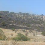 kozan.gr: Φωτιά σε βουνοπλαγιά, κοντά στην περιοχή του Ιερού Ναού Αγίας ΕιρήνηςΧρυσοβαλάντουΒαθυλάκκου δήμου Σερβίων – Βελβεντού (Βίντεο & Φωτογραφίες)
