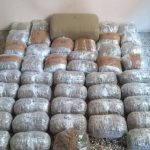 Κοζάνη: Συνελήφθησαν δύο αλλοδαποί, 51 και 29 ετών, για διακίνηση μεγάλης ποσότητας ακατέργαστης κάνναβης, βάρους 58 κιλών και 280 γραμμαρίων (Φωτογραφίες)