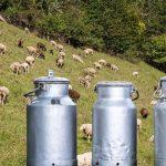 Ερώτηση του ΚΚΕ με θέμα «Προβλήματα αιγοπροβατοτρόφων από τη συνεχή πτώση της τιμής του γάλακτος. «