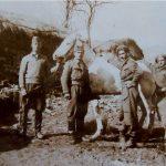 Άλογα κι αναβάτες: κατοχή κι εμφύλιος στην περιφέρεια Κοζάνης (του Θανάση Καλλιανιώτη)