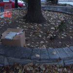 kozan.gr: «Αυτοψία στα χωριά»: Επισκεφτήκαμε το χωριό Καρυδίτσα του δήμου Κοζάνης και καταγράψαμε τα σημαντικότερα προβλήματα που αντιμετωπίζουν οι κάτοικοι (Βίντεο)