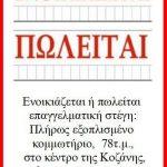 Ενοικιάζεται ή πωλείται επαγγελματική στέγη στην Κοζάνη